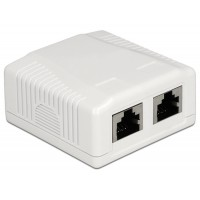 Delock Network Wall Outlet 2 Port Cat.6A LSA